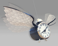 timeflies.jpg